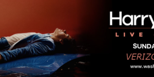 Harry Styles Banner.png