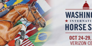 Horse Show Banner.png